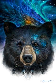 """""""Bear Medicine"""" - Chris Cole"""