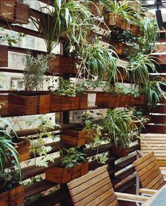 """Outdoor Planter Wall:  """"A clever means of screening off their open plan living space from neighbors in close proximity, while forgoing traditional window coverings. Rather, they have spider plants, herbs and English ivy to help maintain a sense of privacy."""""""