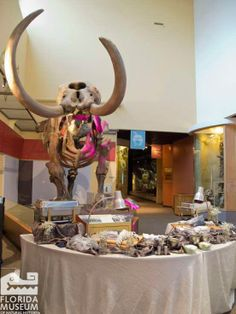Our mastodon is a great setting for a carving station. Florida Museum of Natural History photo by Katina Prokos