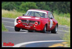 Alfa Romeo GTA. www.auto-italia.net