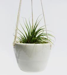 Small Ceramic Hanging Planter