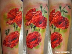 Watercolour poppies green background