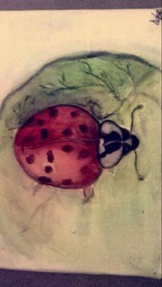 Ladybird in watercolor