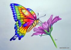 """""""Watercolor Pencils"""" Video & Special This Weekend"""