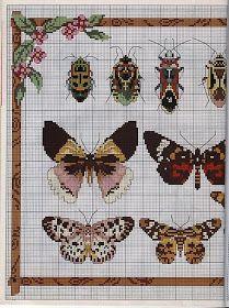 Bugs and butterflies cross stitch free chart