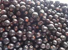 Vaniljainen aronia-omenahillo | Fork-it-to-me