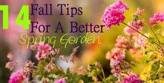 14 #fall tips for a #Spring #garden! #FallTips