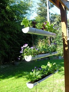 Very little space needed for this Hanging herb garden!
