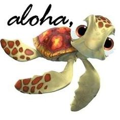 """What did the baby turtle say when he came out of the shell?  """"It's a honu world!"""""""