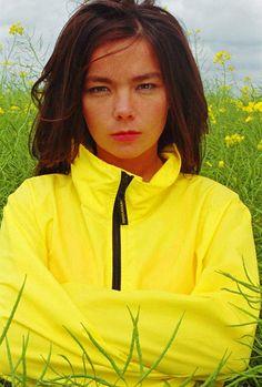 Bjork 1994