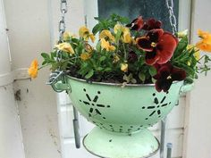 Using an old colander as a decorative planter outdoors! growing herbs, hanging plants, hanging flowers, decorating ideas, flower pots, unusual planters, backyard decorations, hanging planters, hanging baskets