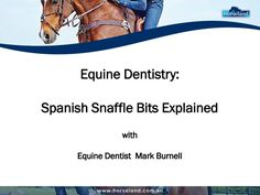 Do you know when to use Spanish snaffle bits on your horse? Checkout this presentation from Horseland.com.au, with equine dentist Mark Burnell, for more information about using these.
