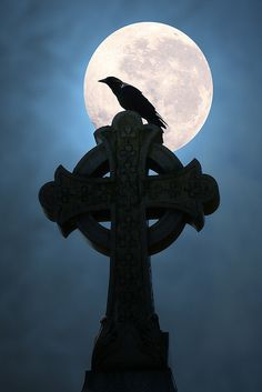 Moonlight Crow (by Anne Marie McCaffrey) Celtic cross night full moon