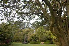 Jardines de Pazo Quinteiro da Cruz (Ribadumia, Pontevedra) - Ruta do Viño Rías Baixas