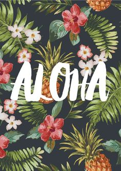 Aloha! Source: TheNativeState