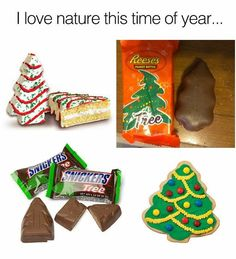 33 Of Today's Freshest Pics And Memes Christmas Humor, Christmas Time, Xmas, Christmas Ideas, Christmas Goodies, White Christmas, Holiday Fun, Merry Christmas, Funny Pins