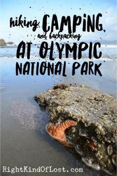 Olympic National Park Camping, hiking, backpacking, and exploring Olympic National Park. Backpacking For Beginners, Backpacking Tips, Hiking Tips, Hiking Gear, Baby Hiking, Hiking Shoes, Family Camping, Camping Gear, Outdoor Camping