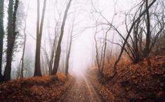 METEO – O saptamana fara ploi dar cu frig si ceata