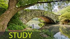 3 Hour Study Music to Focus and Concentrate: Relaxing Music, Calming Mus...
