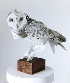 Anna-Wili Highfield's Beautiful Animal Paper Sculptures http://designwrld.com/anna-wili-highfields-beautiful-animal-paper-sculptures/