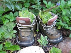 Little shoe planter