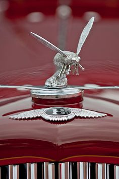 ≗ The Bee's Reverie ≗ 1934 Bentley Drophead Coupe Bee Hood Ornament