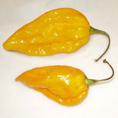 BIG LIST OF HOT PEPPERS - Cayenne Diane