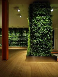 awasome-vertical-garden-design-ideas-with-some-lighting-ceiling-also-brown-wooden-floor-and-red-wooden-pole-728x970.jpg (728×970)