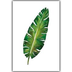 Modern Simple Watercolor Big Leaf Plant Leaf Canvas Painting Art Print Poster Picture Mural Elegant Home Decoration Big Leaf Plants, Plant Leaves, Painting Prints, Art Prints, Painting Art, Multi Picture, Big Leaves, Poster Pictures, Easy Watercolor