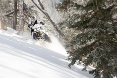 Find any good snowmobile trails over the weekend? Polaris Snowmobile, Bad Boys, Trail, Play, House, Outdoor, Outdoors, Home, Outdoor Games