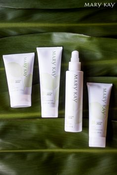 Does your skin tend to be oily, dry, or a combination of the two? Have no fear, your newest custom skin care collection is here with Mary Kay® Botanical Effects® Skin Care!