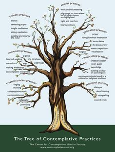 Tree of Contemplative Prcatices. I love this! This is getting printed out :)