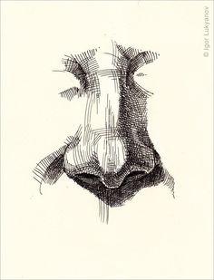 базовая проработка носа