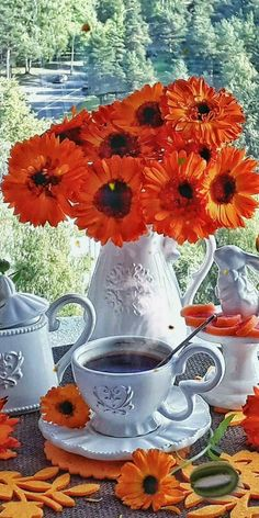 Good Morning Coffee Images, Good Morning Coffee Gif, Good Morning Good Night, Day For Night, Beautiful Scenery Pictures, Cool Pictures Of Nature, Good Morning Beautiful Images, Amazing Flowers, Beautiful Flowers