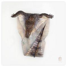 ART PRINTS — Fine Taxidermy by Darwin, Sinke & van Tongeren
