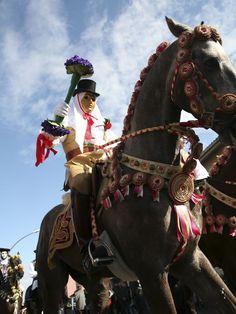Sa Sartiglia -Carnival celebrations, province of Oristano Sardinia Island, Sardinia Italy, Equestrian, Carnival, Europe, Horses, Spaces, Costumes, Sweet