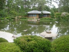 Tea Room in Japanese Garden, Memorial Park, Houston Houston Livestock Show, Space City, Showing Livestock, Texas History, Memorial Park, Photo Location, Rodeo, Gazebo, Cool Photos