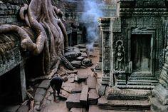 Ta Prohm Temple, Angkor Wat, Cambodia | Steve McCurry