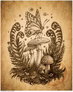 Add more insects and its the perfect tattoo for me