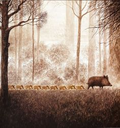 by Annegert Fuchshuber