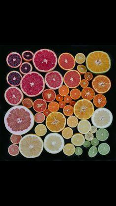 Citrus art