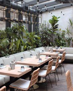 233 отметок «Нравится», 6 комментариев — DA Architects (@da_architects) в Instagram: «⠀⠀◤ Jungle │ cafe ◢ ⠀ #interiordesign by #DA_architects #DAarch #daдизайн #junglespb #design…»