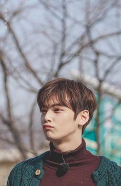 Lee Dong Min, how to be cute? Astro Eunwoo, Cha Eunwoo Astro, Korean Star, Korean Men, Asian Actors, Korean Actors, Korean Idols, Kpop, Park Jin Woo