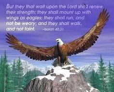 Isaiah 40:31.... This is my FAVORITE scripture!