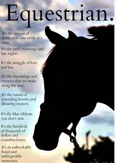 You're not a true equestrian until you've faced every single one of these moments and still went on loving horseback riding. Equine Quotes, Equestrian Quotes, Equestrian Problems, Horse Love, Horse Girl, Inspirational Horse Quotes, Horse Riding Quotes, Horse Jumping Quotes, Mundo Animal