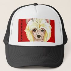 Chinese Crested Color Block Trucker Hat   pug lover gifts, pugs and kisses valentines, cute pugs puppies funny #friendsthatbuymesocks #Rescue #buyhandmade Funny Westies, Cute Pug Puppies, Cute Pugs, Art Beagle, Beagle Dog, Boxer Dogs, Pug Halloween Costumes, Pug Facts, Small Pug