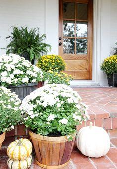 How To Make Mums Last Longer #frontdoor #falldecor #porch #mums