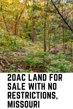 This is what we all need right now. A decent size chunk of land where we can get away and peace out!  Where we can plan for your future, get our gardens set up a safe water source and a fantastic cabin. We love it here ad now it is for sale. Check out the property today!!