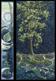 """""""Black Cottonwood"""" - a tree of the Canadian West. A quilter with an eco mission."""