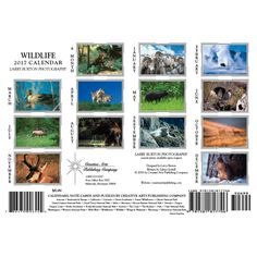 Image result for creative calendar wildlife